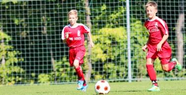 U17 punktet gegen Cottbus, U19 verliert gegen Magdeburg
